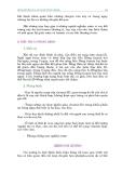 BẢO VỆ SỨC KHỎE - DINH DƯỠNG HỢP LÝ VÀ SỨC KHỎE – 7