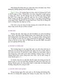 SỨC KHỎE - PHẦN HAI NHỮNG VẤN ĐỀ CÓ LIÊN QUAN TỚI TỪNG PHẦN THÂN THỂ - 3