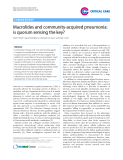 """Báo cáo y học: Macrolides and community-acquired pneumonia: is quorum sensing the key"""""""
