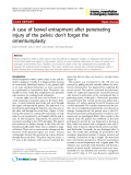 """Báo cáo y học: """"A case of bowel entrapment after penetrating injury of the pelvis: don't forget the omentumplasty"""""""
