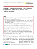 """Báo cáo y học: """"Emergency Department Triage Scales and Their Components: A Systematic Review of the Scientific Evidence"""""""
