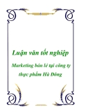 Luận văn: Marketing bán lẻ tại công ty thực phẩm Hà Đông