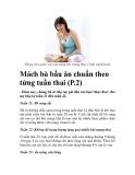 Mách bà bầu ăn chuẩn theo từng tuần thai (P.2)