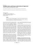 "Báo cáo y học: ""Cytoplasmic dynein could be key to understanding neurodegeneration"""