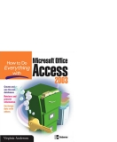 how to do everything with microsoft office access 2003 phần 1