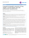 """Báo cáo y học: """" Endothelial Computed tomographic assessment of lung weights in trauma patients with early posttraumatic lung dysfunction"""""""