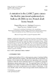 """Báo cáo sinh học: """"A mutation in the LAMC2 gene causes the Herlitz junctional epidermolysis bullosa (H-JEB) in two French draft horse breeds"""""""