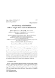 """Báo cáo sinh học: """"Evolutionary relationships of Red Jungle Fowl and chicken breeds"""""""