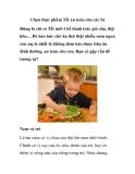 Chọn thực phẩm Tết an toàn cho các bé