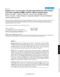 """Báo cáo y học: """"Evidence for a second class of S-adenosylmethionine riboswitches and other regulatory RNA motifs in alpha-proteobacteria"""""""