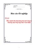 Luận văn: Đẩy mạnh tiêu thụ hàng hoá tại Công ty thương mại tổng hợp tỉnh Nam Định