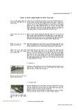 Quản lý chất lượng ao nuôi thủy sản