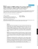 "Báo cáo y học: ""Global analysis of mRNA stability in the archaeon Sulfolobus"""