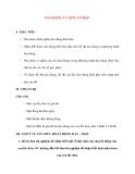 Vật lý 12 Phân ban: DAO ĐỘNG VÀ SÓNG CƠ HỌC