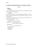 Giáo án Toán: Tiết 29 -  Bài 2. PHƯƠNG TRÌNH THAM SỐ CỦA ĐƯỜNG THẲNG
