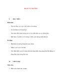 Vật lý 11 chương trình chuẩn: Bài 19. TỪ TRƯỜNG
