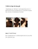3 kiểu tóc đẹp cho các bạn gái