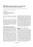 """Báo cáo y học: """"Gene regulation and signal transduction in the immune system"""""""