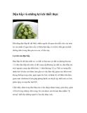 Đậu bắp và những lợi ích thiết thực