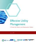 Effective utility management phần 1