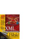 Xml programming bible phần 1