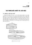 Thiết kế tàu thủy ( Trần Công Nghị - Nxb ĐH quố gia ) - Chương 12