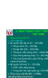 Năng lượng tái tạo (Phần 2) - Chương 2: Hiện trang phát triển NLTT tại Việt Nam