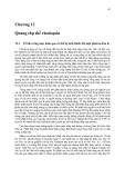 Sinh học phân tử màng tế bào ( Tập 2 GS. TS. Đỗ Ngọc Liên ) - Chương 12