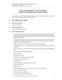Công ty Cổ phần Đầu tư Phát triển Công nghiệp Thương mại Củ Chi Thuyết minh Báo cáo tài chính 2009