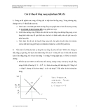 Kinh tế vĩ mô - Lý thuyết tổng cung ngắn hạn