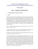 TÀI LIỆU GIẢNG DẠY VỀ SỞ HỮU TRÍ TUỆ - BÀI 3: SÁNG CHẾ VÀ MẪU HỮU ÍCH - GS. MICHAEL BLAKENEY