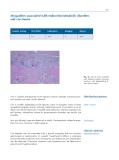 Atlas of Neuromuscular Diseases - part 10