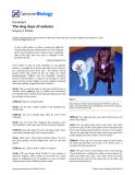 "Báo cáo y học: "" The dog days of autumn"""