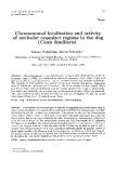 Báo cáo sinh học: Chromosomal localization and activity of nucleolar organizer regions in the dog