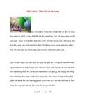 Bạc Clorua - Tính chất và ứng dụng