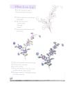 Kỹ thuật vẽ và in hoa part 3