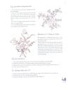 Kỹ thuật vẽ và in hoa part 5