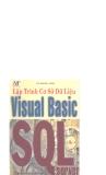 Lập trình cơ sở dữ liệu Visual Basic SQL server part 1