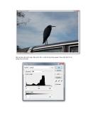 Giáo trình hình thành hệ thống ứng dụng cấu tạo phông nền sử dụng bộ lọc filter Arctis p5