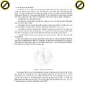 Giáo trình hình thành hệ thống ứng dụng cấu trúc và bản chất vật lý của thiên thạch p2