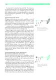 ESSENTIAL NEUROLOGY - PART 6