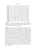 Handbook of EEG interpretation - part 3