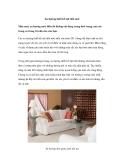 Xu hướng thiết kế nội thất mới