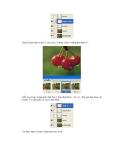 Giáo trình hình thành hệ thống ứng dụng bộ lọc brush tip set theo tweened animation p2