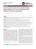 Sodium valproate-induced congenital cardiac abnormalities in mice are associated with the inhibition of histone deacetylase