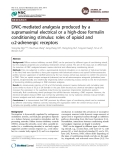 DNIC-mediated analgesia produced by a supramaximal electrical or a high-dose formalin conditioning stimulus: roles of opioid and a2-adrenergic receptors