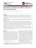 Identification of baboon microRNAs expressed in liver and lymphocytes