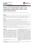 Delivery of chemotherapeutic agents using drug-loaded irradiated tumor cells to treat murine ovarian tumors