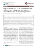 """Báo cáo y học: """" Over-expression of HO-1 on mesenchymal stem cells promotes angiogenesis and improves myocardial function in infarcted myocardium"""""""