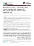 "Báo cáo y học: ""Tumor necrosis factor-a enhances hyperbaric oxygen-induced visfatin expression via JNK pathway in human coronary arterial endothelial cells"""